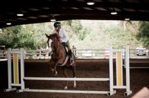 RoseAnn taking a jump with Splash at a local show.