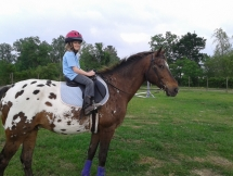 Olivia (age 8) riding Kasey