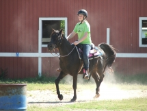 Black doing a riding lesson.
