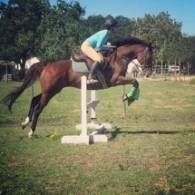 October 2014 Savannah on John